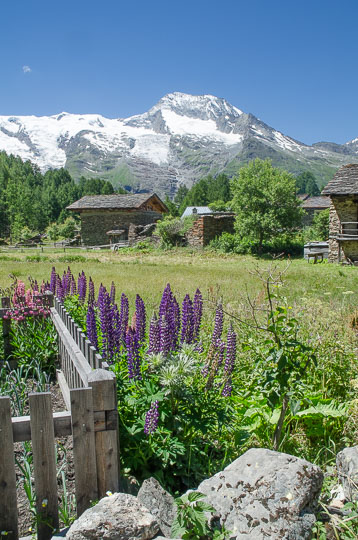 Cottage garden with chalte and snow-capped mountains
